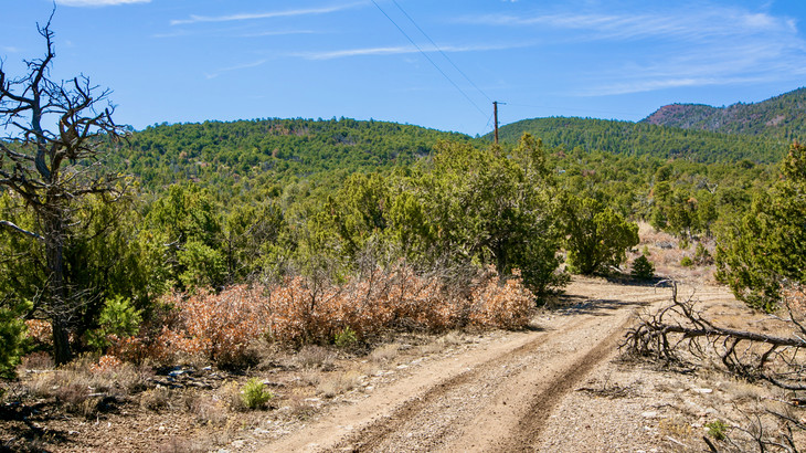 Property - Sandia Mountain Acreage with Access and Fantastic Views